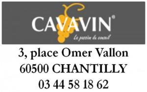 Cavavin 2017